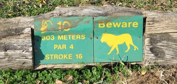 Löwenwarnschild im Skukuza Golfpark