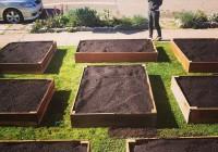 Komposterde und Vorgarten