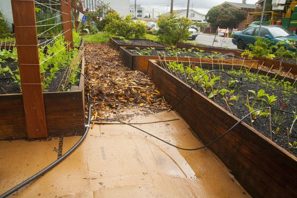 Bewässerungssystem für Gemüsebeete
