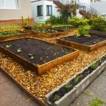 Ziegelsteine als Gartengrenze